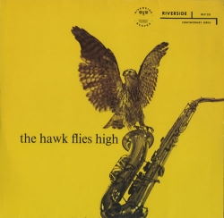 The hawk flies high