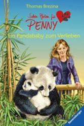 Ein Pandababy zum Verlieben