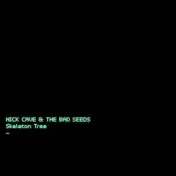 Skeleton tree [Audioregistrazione]